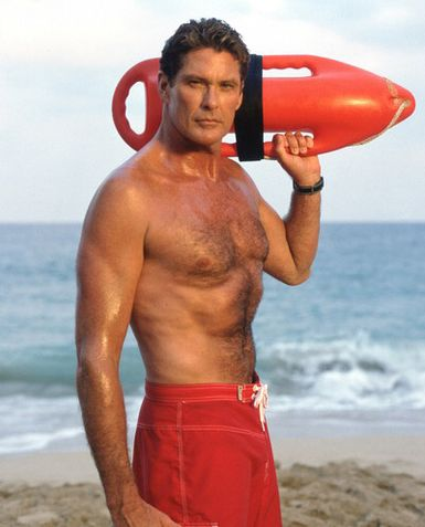http://1416andcounting.files.wordpress.com/2008/12/david-hasselhoff-baywatch-photograph-c10103337.jpeg